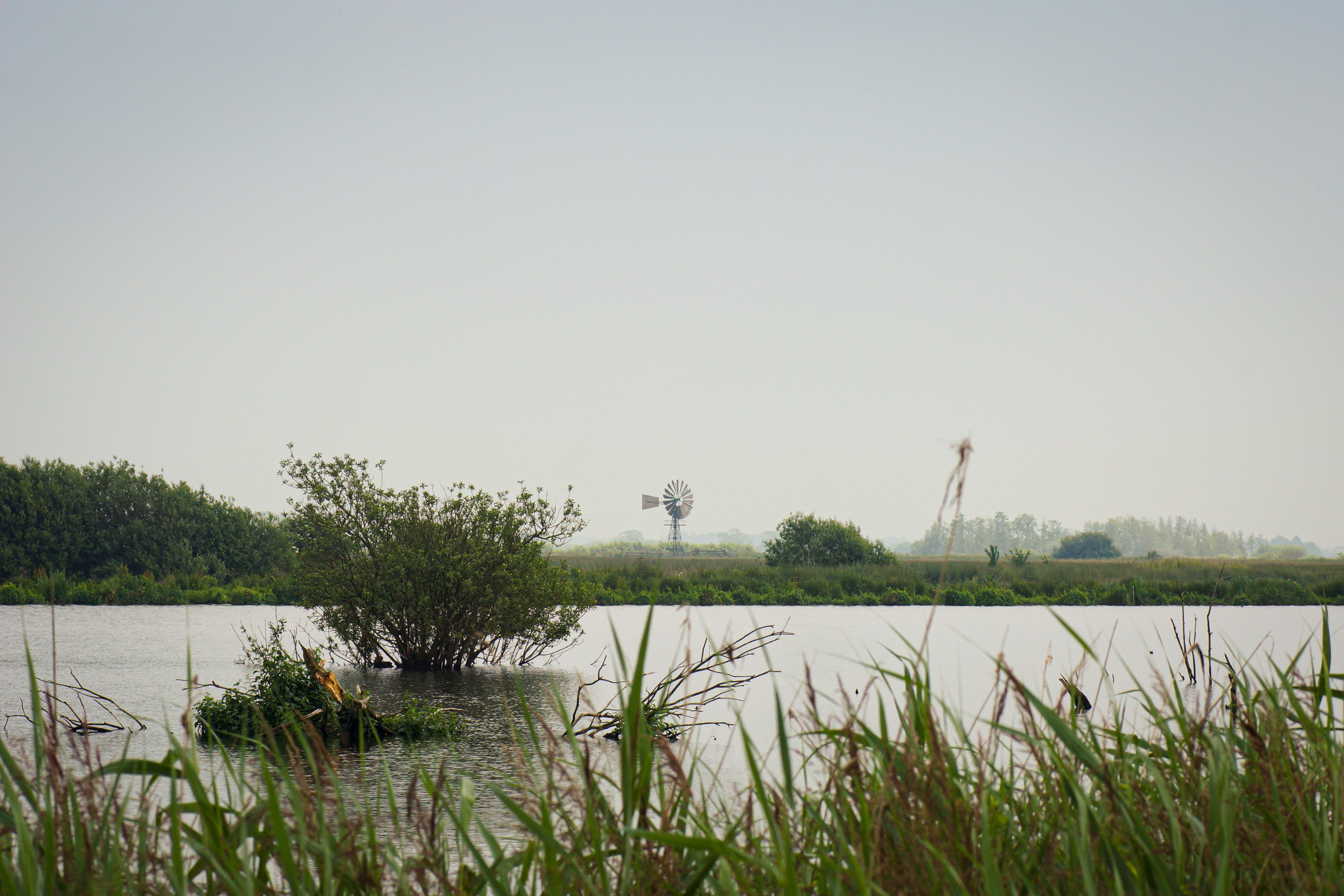 Landschap Nationaal Park De Alde Feanen Friesland